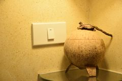 Lighting Switch and Recycle a Coconut shell Bucket. In Bathroom royalty free stock photography
