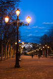 Lighting up the night. Lamppost in a long, straight boulevard with sandy soil Stock Photo