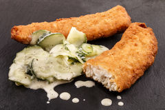 Lightly coated whiting fillets and cucumber salad Royalty Free Stock Photo