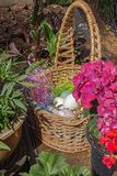 Lightly colored easter eggs in multicolored sitting in a wicker basket