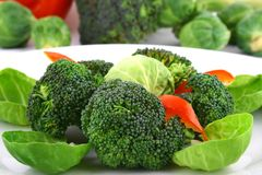 Lightly cooked broccoli Royalty Free Stock Photos