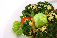 Lightly cooked broccoli Royalty Free Stock Photo