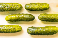 Lightly salted cucumbers, pickles Stock Photography