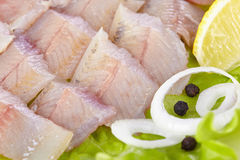 Lightly salted grayling. Fillet of a lightly salted grayling closeup Stock Photography
