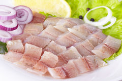 Lightly salted grayling. Fillet of a lightly salted grayling on a white plate Royalty Free Stock Photos