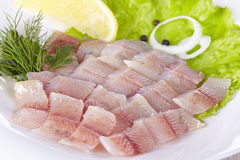 Lightly salted grayling. Fillet of a lightly salted grayling on a white plate Stock Photo