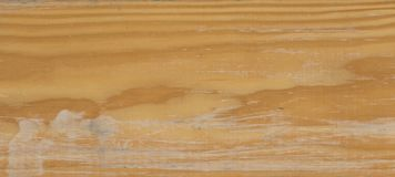 Lightly Worn Wood Texture. Closeup Royalty Free Stock Photo