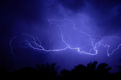 Lightning. A web of lightning strikes, during a thunderstorm stock image