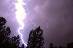 Lightning. Strike with trees in foreground royalty free stock photography