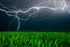 Lightning above the field Royalty Free Stock Images