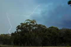 Lightning Above the Green Trees stock image