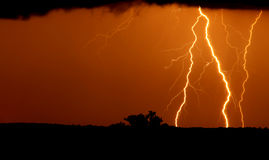 Lightning bolt. A lightning bolt during a thunder storm royalty free stock image