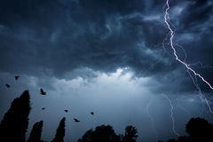 Lightning bolt on dramatic sky Stock Image