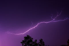 Lightning in the night sky above the treetops Royalty Free Stock Photo