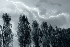 Lightning over the tree Royalty Free Stock Photos