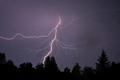 Lightning Silhouettes Trees Royalty Free Stock Photos