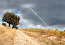 Lightning in the sky Royalty Free Stock Photography