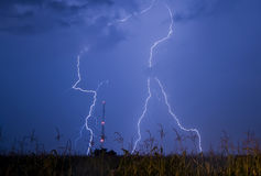 Lightning storm. Over a corn field Stock Photo