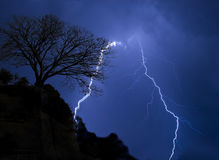 Lightning in stormy night. And tree royalty free stock photos