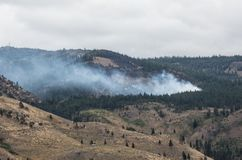 Lightning strike in the forest, Sierra Nevada Range Stock Image