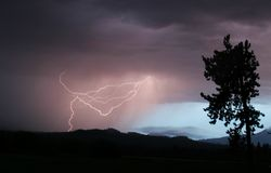 Lightning Strikes Once. A single lightning strike, right before sunset, silhouettes a single pine tree stock images