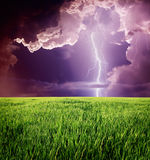 Lightning. Thunderstorm with lightning in green meadow royalty free stock image