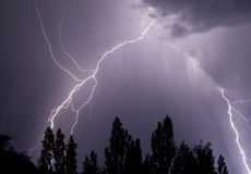 Lightning and Trees. Lightning cracks over trees with dark cloudy sky Stock Image