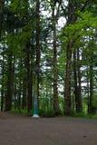 Lightpost auf dem Teilen des Weges Stockfoto