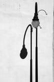 Lightpost y sombra Foto de archivo libre de regalías