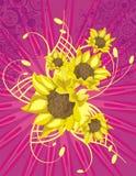 Lightray Blumenhintergrund Lizenzfreies Stockbild
