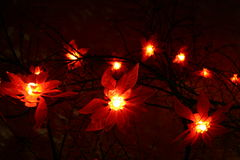 Lights. A part of a christmas decoration in the night Stock Image