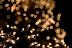 Lights. Swarm of warm garland lights on black Stock Images