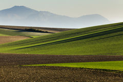 Lights of Andalucia. Andalucia lights in rural landscapes and agricultural Stock Photos