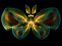 Lights of Butterfly Royalty Free Stock Photography