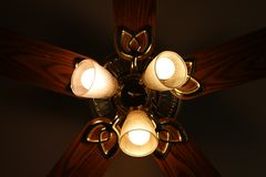 Lights and ceiling fan