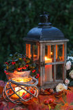 Lights in the evening with foliage Stock Images