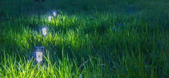 Lights in the garden. Lights garden light on green grass with dew Royalty Free Stock Image