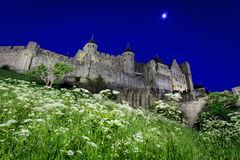 Lights illuminate the walled city and flowers stock photography