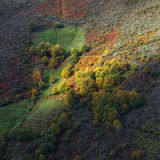 Lights and shadows on the hillside forests Royalty Free Stock Images