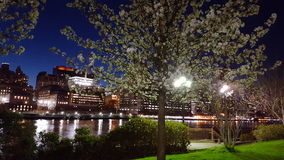 Lights in trees. View of Manhattan from Roosevelt Island Stock Photo