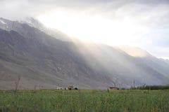 Lights of Zanskar. Evening light of sunset is blessing the valley stock photography