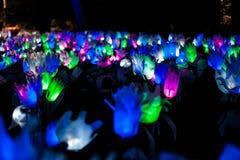 Lightscape Стоковые Изображения