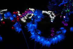 Lightscape Royalty Free Stock Photo
