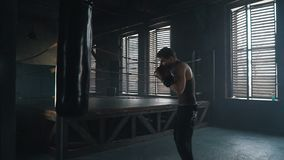 Lightweight boxer training in vintage gym slowmo. Lightweight boxer training hard in dark vintage stylized gym. Caucasian young man with boxing gloves hitting stock video footage