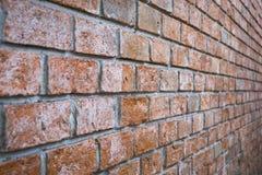 Red brick wall texture. Brick wall Royalty Free Stock Images