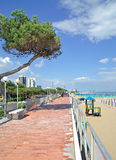 Lignano Pineta,Italy Royalty Free Stock Photography