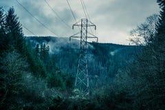 Ligne à haute tension dans la forêt Image stock