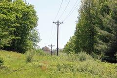 Ligne à haute tension par les arbres Images libres de droits
