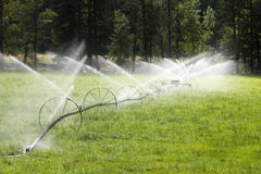 Ligne équipement agricole de roue d'irrigation d'arroseuse Photographie stock