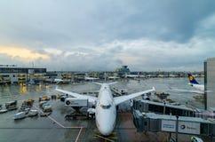 Ligne aérienne de Lufthansa à l'aéroport de Francfort photos stock